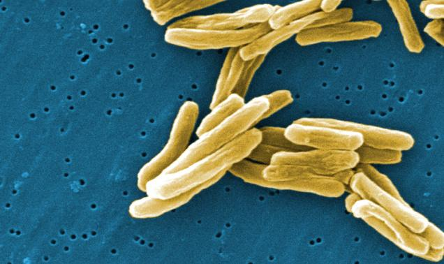 Is the new TB drug already being misused?