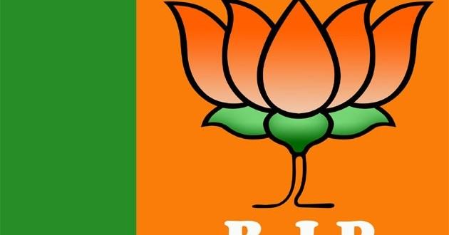 J&K polls BJP to tap social media to reach out to voters