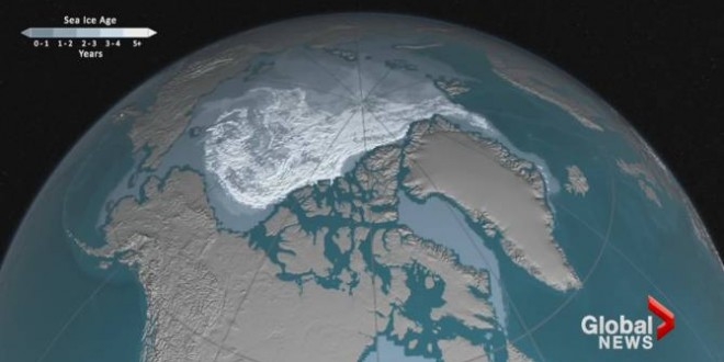Time-lapse images illustrate loss of older, thicker ice in warming Arctic