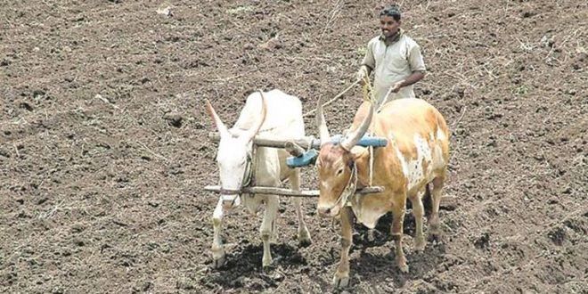 Farmers must fill loan waiver forms by Sept. 15
