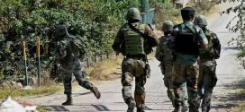 Encounter Breaks Out In Jammu And Kashmir's Anantnag, Terrorists Holed Up